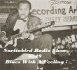 SURFINBIRD RADIO SHOW # 349 Blues With A feeling