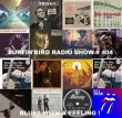 Surfinbird Radio Show # 404 Blues with A Feeling