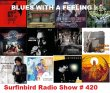 Surfin Bird Radio Show # 420 Blues With A Feeling